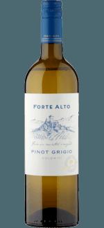 FORTE ALTO - PINOT GRIGIO 2015 - DOLOMITI