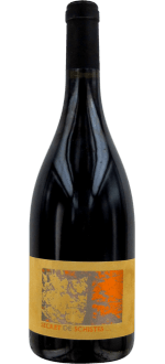 SECRET DE SCHISTES 2015 - CHATEAU DE L'OU
