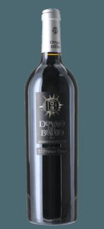 DOMINIO DEL BENDITO - PRIMER PASO 2015