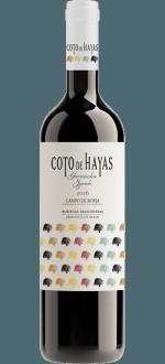 BODEGAS ARAGONESAS - COTO DE HAYAS 2016
