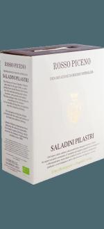 BAG-IN-BOX - WEINSCHLAUCH - SALADINI PILASTRI - ROSSO PICENO 2016