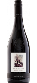 GNARLY DUDES SHIRAZ 2018 - THO HANDS WINES