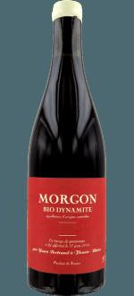 MORGON - DYNAMITE 2019 - LES BERTRAND
