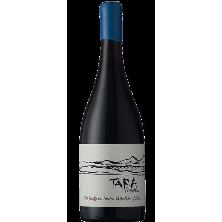 RED WINE N°2 2015 - SYRAH - TARA